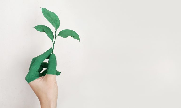 Servignat Says: The Rise of Responsible Investing